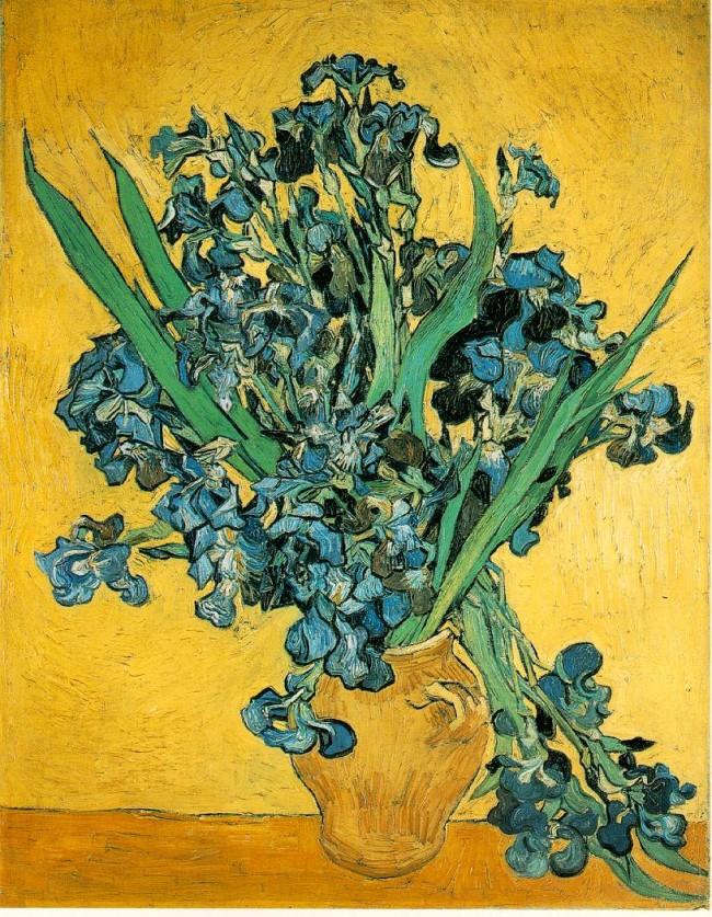 Vincent_van_Gogh_Irises.jpg