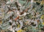 Jackson_Pollock_Untitled_Green.jpg