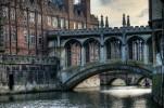 Wandering Cambridge